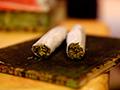 Marijuana Entrepreneurs Plagued by Mystery Bullies