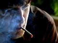 Medical Marijuana Saves Lives, Study Reports